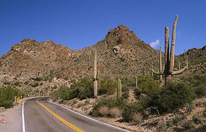 Family Vacation In Arizona Bluegreen Vacations
