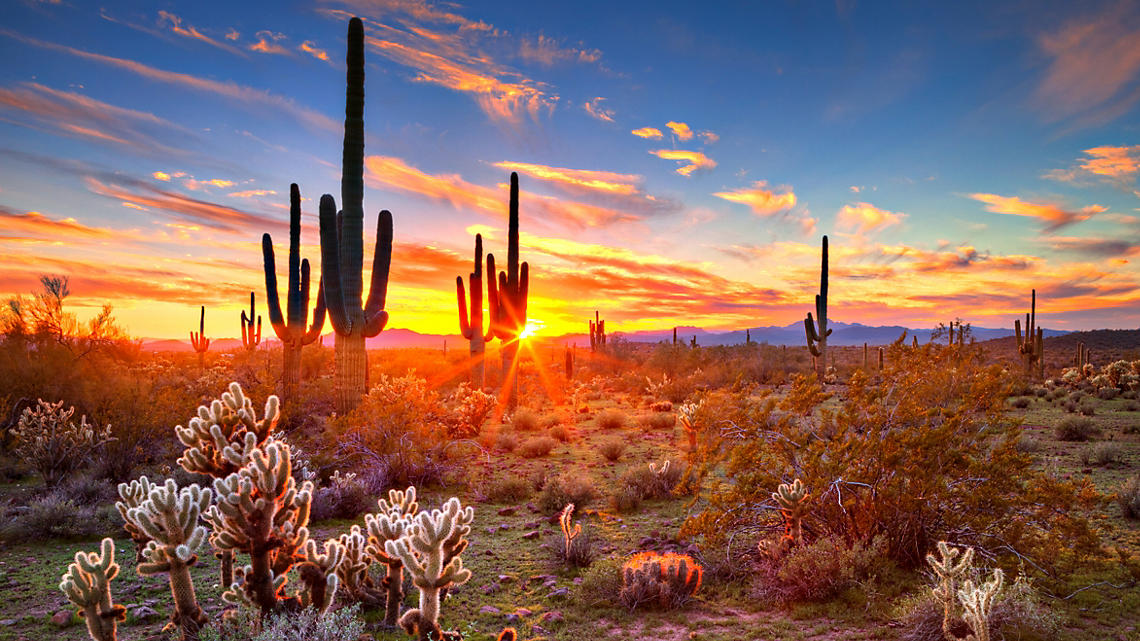 Arizona sunset at Sonoran desert
