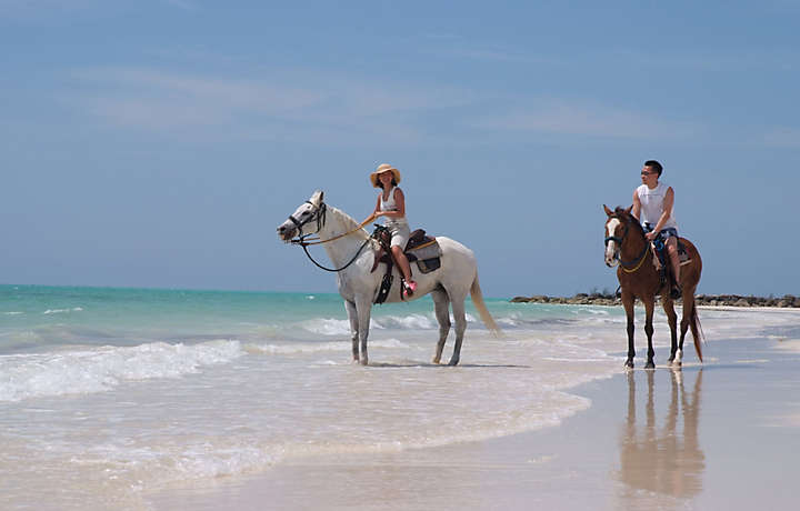 Horse-back Riding in Bahamas on the beach