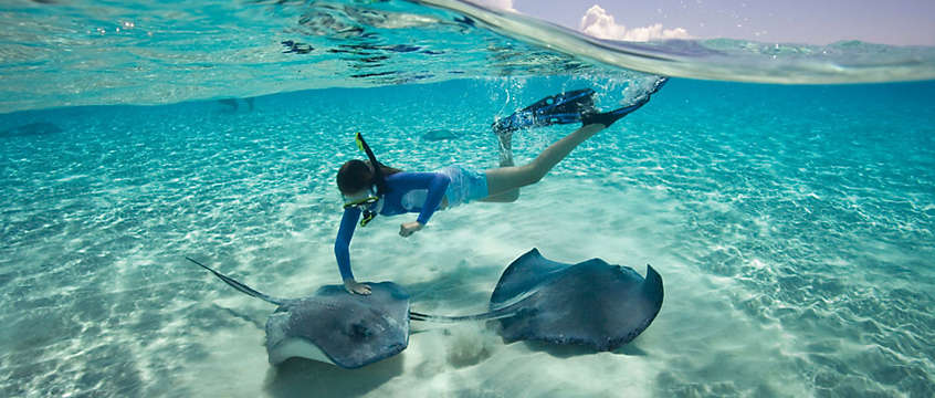 Snorkeling in Bahamas with sting rays