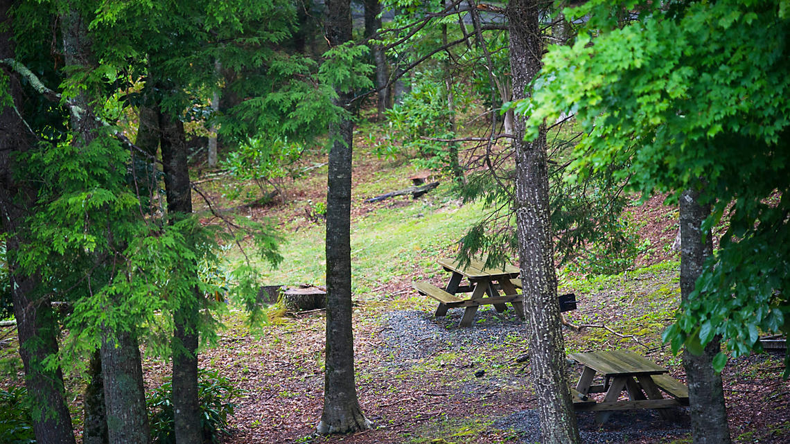 Picnic Area at Blue Ridge Village
