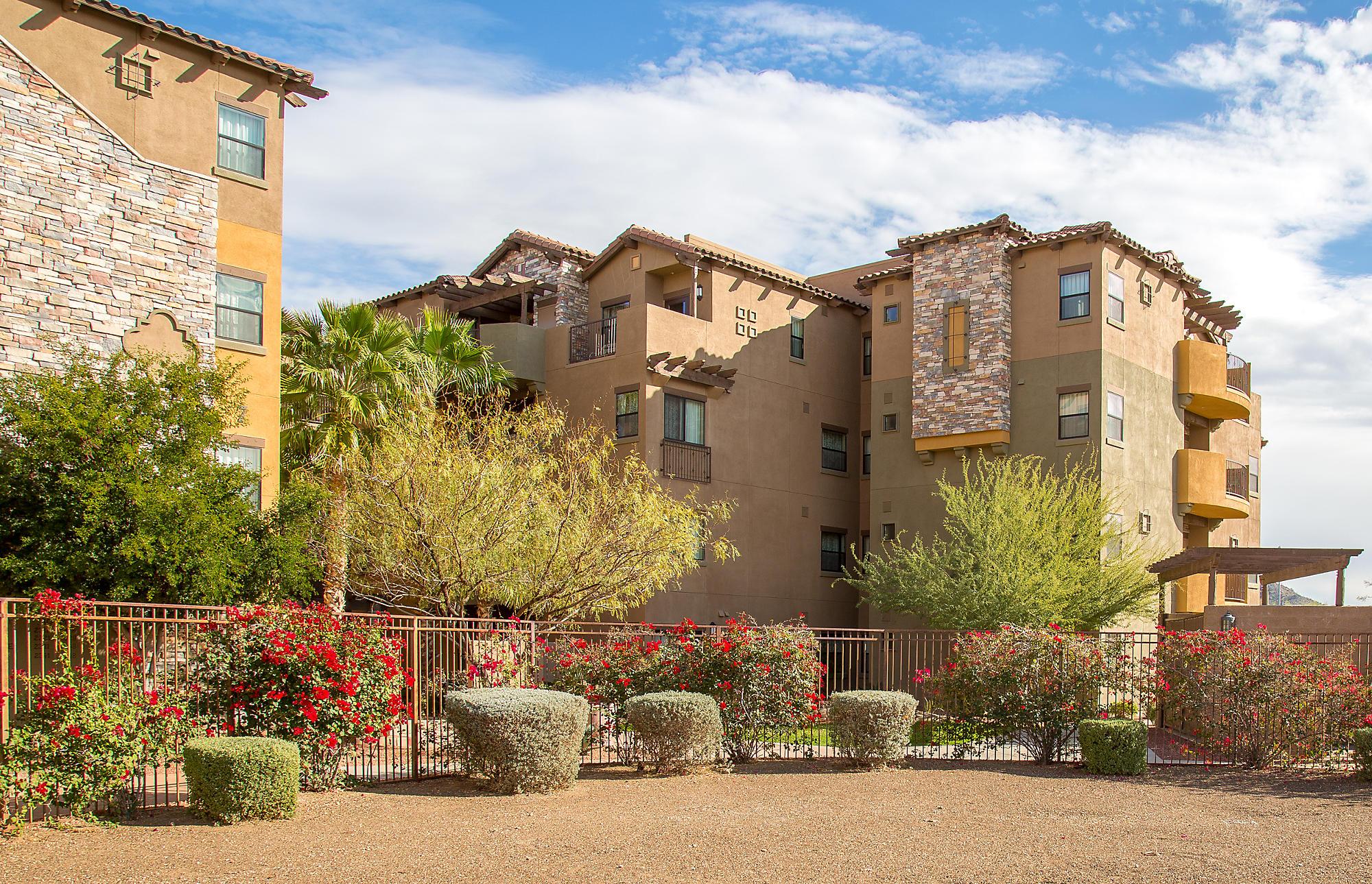 Cibola Vista Resort and Spa  Peoria Arizona  Bluegreen