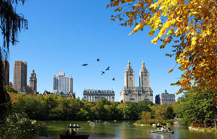 Central Park Lake - New York