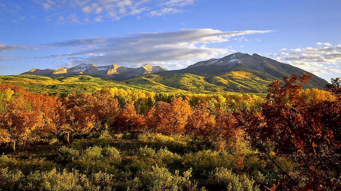 Aspens blanket the valley awash in golden and sienna hues