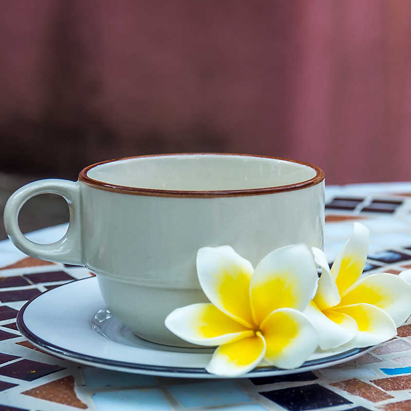 cup and saucer with plumeria