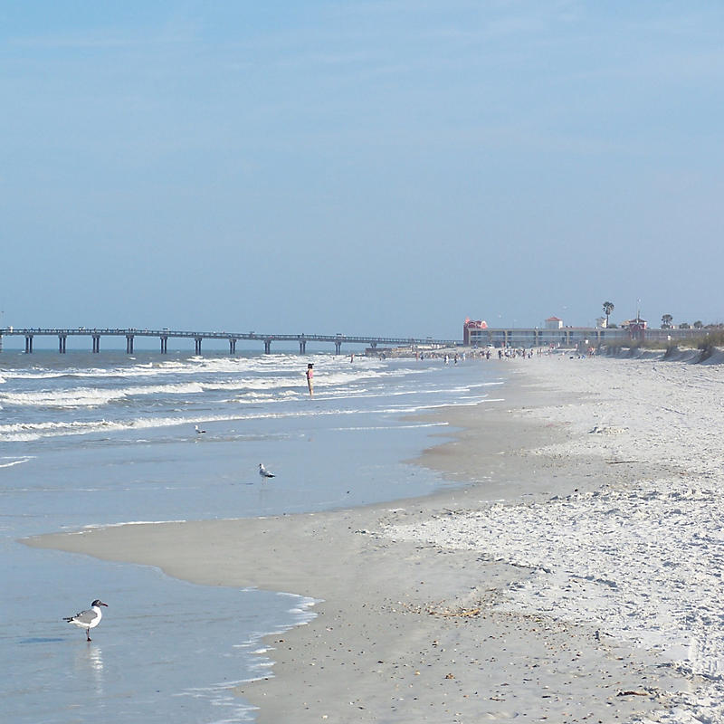 beach and bridge at Anastasia State Park