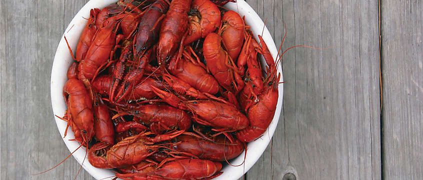 New Orleans crawfish