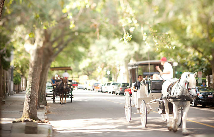 Horse and Buggy Tours for Bluegreen Vacations to Charleston