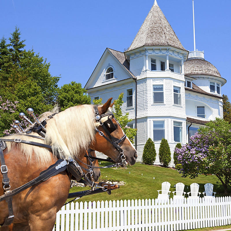 Horse along road passing Mackinac Island West bluff victorian cottage