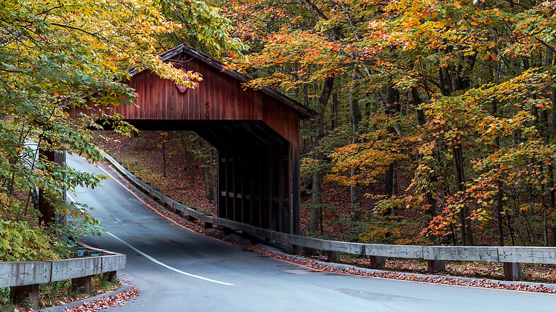 A covered bridge peeks through the soft foliage