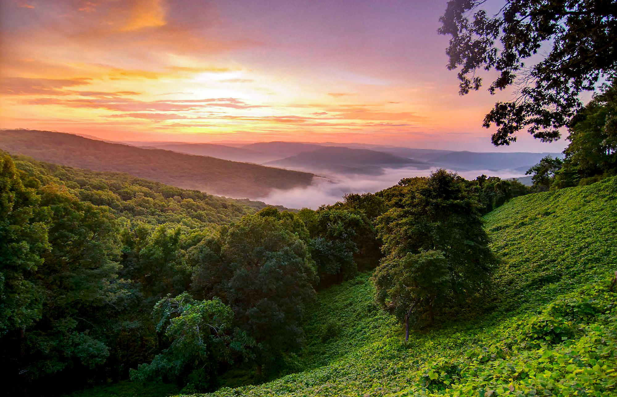 Missouri Ozark Mountains Hillside Sunrise