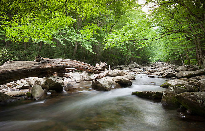 MountainLoft™ Smoky Mountain Stream