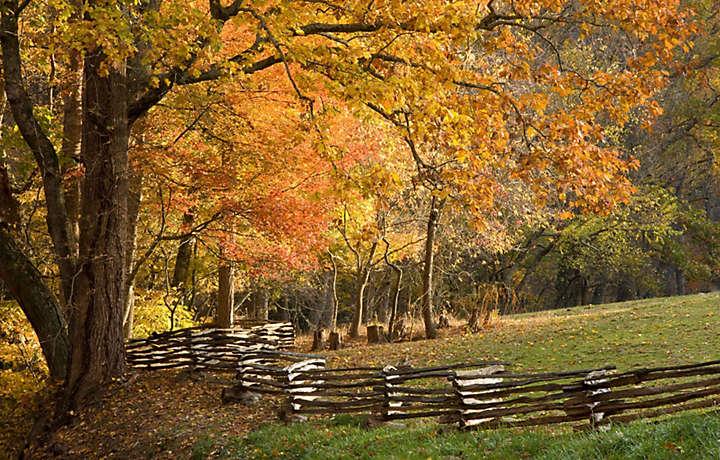 Fall Foliage Tours North Carolina