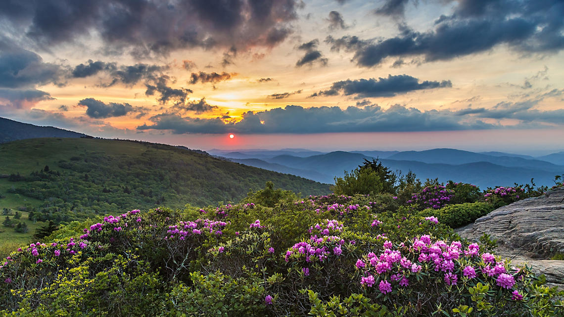 Springtime signals its arrival in the Smoky Mountains