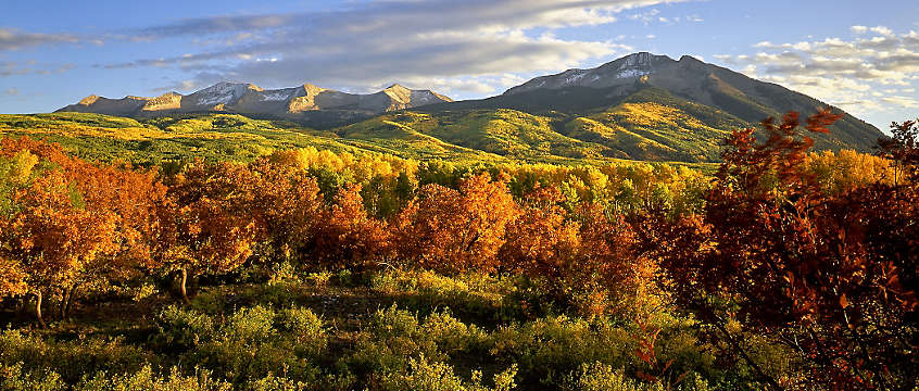 Aspen, Coloardo - mountainside in fall