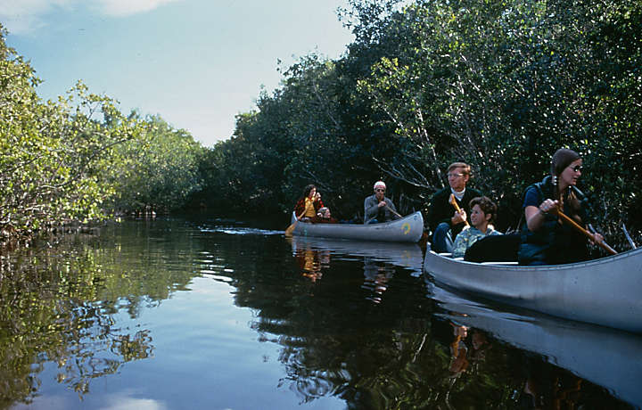 Florida Keys Kayak Tours with Bluegreen Resorts