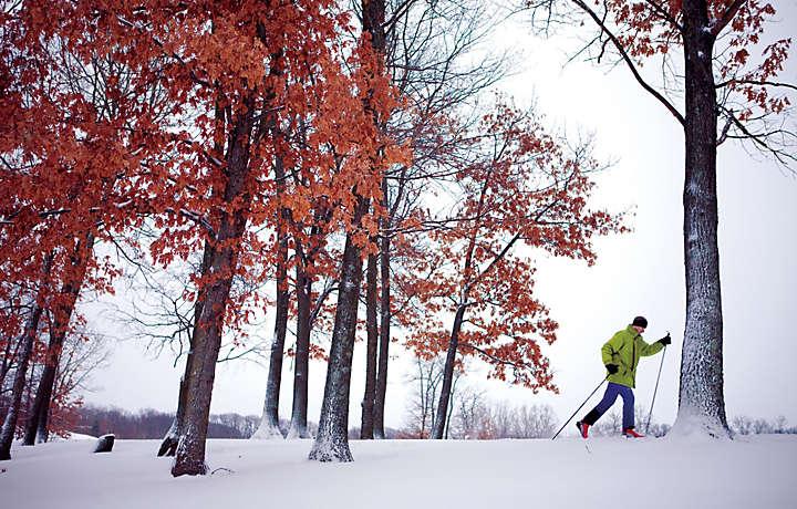 Cross country skiing in Michigan