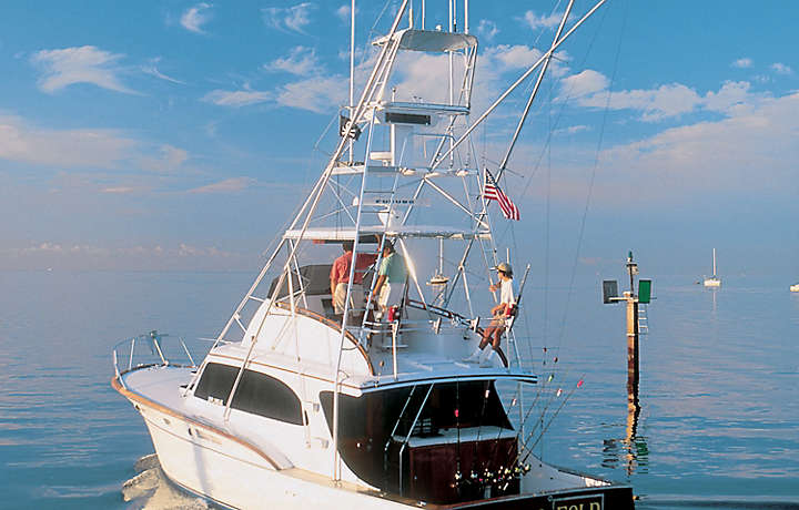 Bluegreen Fishing Trips in the Florida Keys