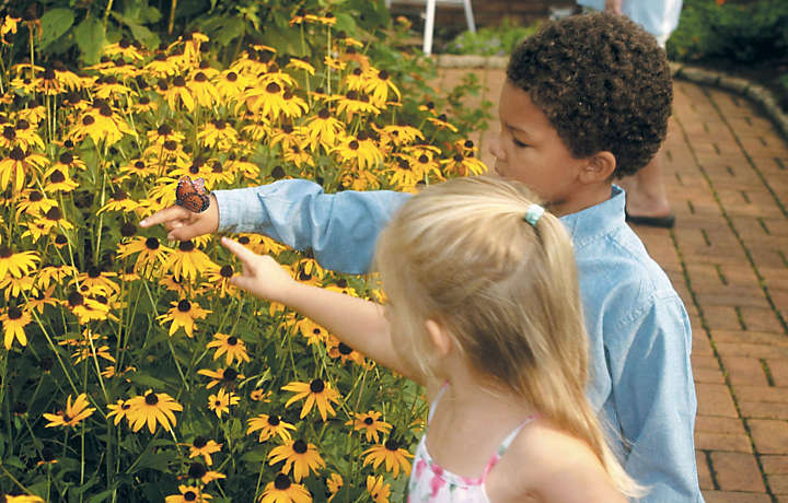 Kids looking at the flowers and butterflies in Hershey, Pennsylvania