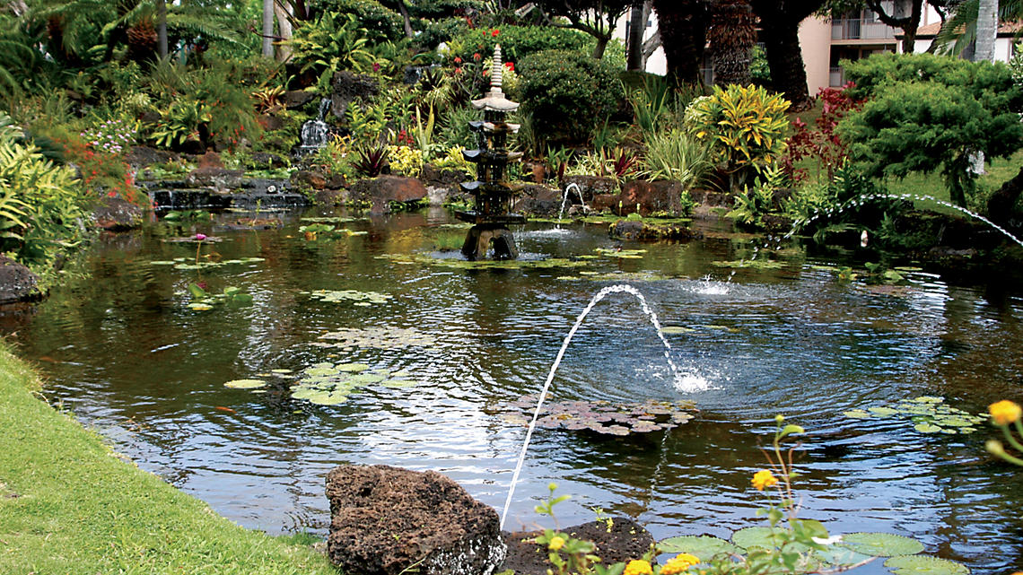 Pono Kai Pond and Fountain