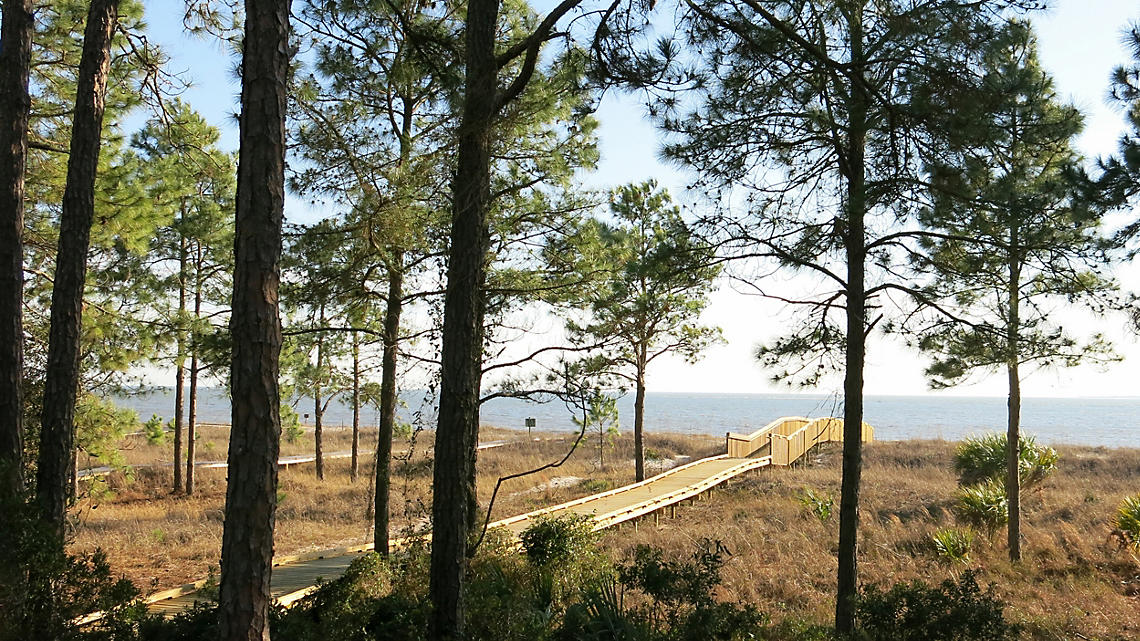 Wooded walk on Hilton Head Island.