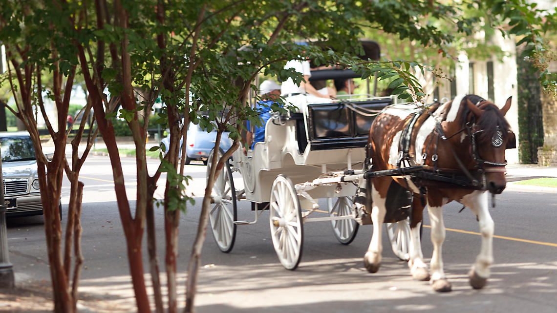 Listen for horse-drawn carriages as they clop along historic roadways