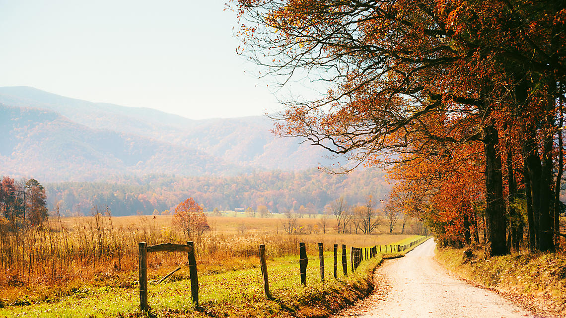 Tennessee during autumn on a country road