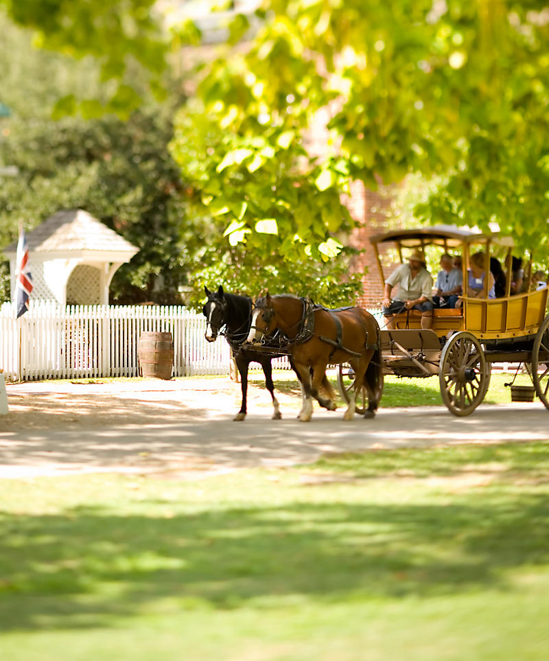 Virginia Williamsburg Horse Drawn Carriage Tours