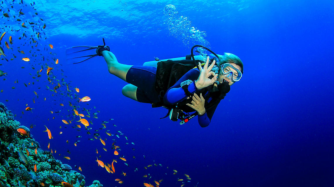 Scuba diving along the coral barrier reef